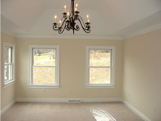 Andrea and Mike's Custom Home Master Suite