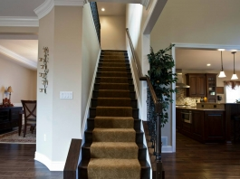 Paragon-Collier-Township-Custom-Homes-Stairs-Windows-9