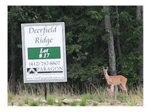 Deerfield Ridge Lot