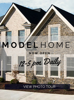 Paragon Custom Homes Models